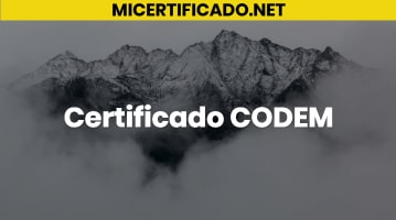 Certificado CODEM