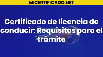 Certificado de licencia de conducir