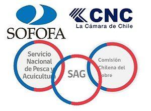 entes encargados de realizar el certificado de origen en chile