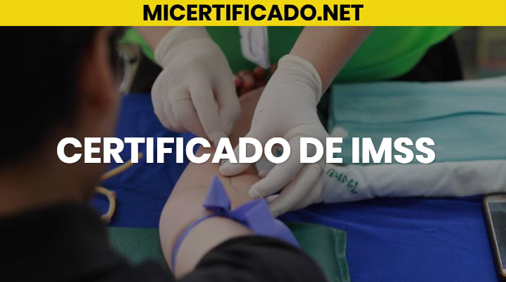 Certificado de IMSS