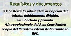 requisitos y documentos